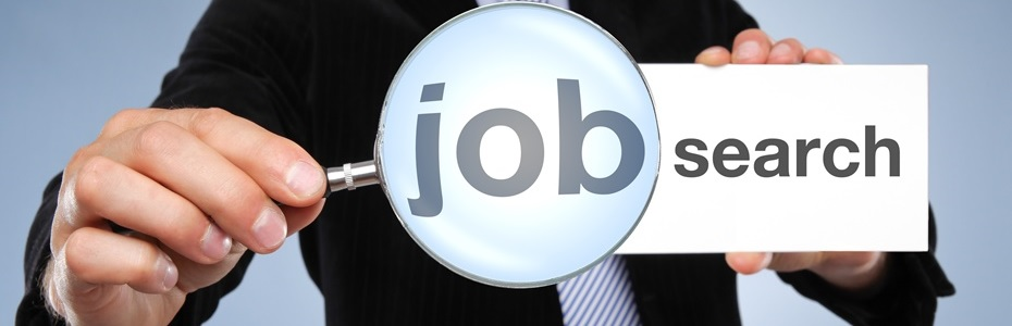 חיפוש עבודה CC